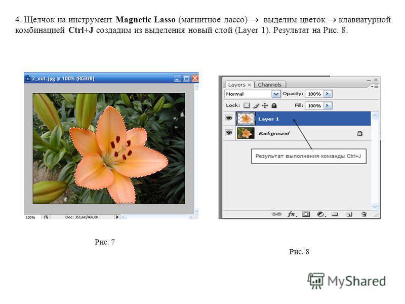 4. Щелчок на инструмент Magnetic Lasso (магнитное лассо) выделим цветок клавиатурной комбинацией Ctrl+J создадим из выделения новый слой (Layer 1). Результат на Рис. 8. Рис. 8 Рис. 7