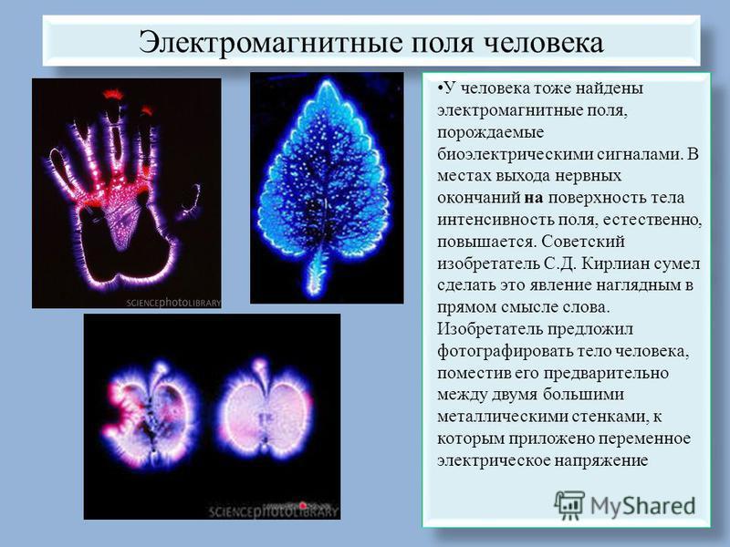 Электромагнитные поля человека У человека тоже найдены электромагнитные поля, порождаемые биоэлектрическими сигналами. В местах выхода нервных окончаний на поверхность тела интенсивность поля, естественно, повышается. Советский изобретатель С.Д. Кирл