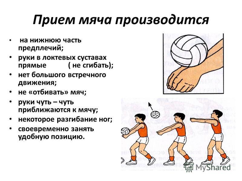 Прием мяча производится на нижнюю часть предплечий; руки в локтевых суставах прямые ( не сгибать); нет большого встречного движения; не «отбивать» мяч; руки чуть – чуть приближаются к мячу; некоторое разгибание ног; своевременно занять удобную позици