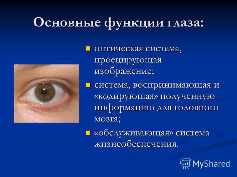 Основные функции глаза: оптическая система, проецирующая изображение; оптическая система, проецирующая изображение; система, воспринимающая и «кодирующая» полученную информацию для головного мозга; система, воспринимающая и «кодирующая» полученную ин