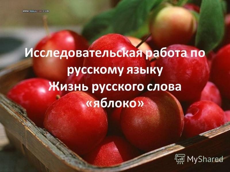 Исследовательская работа по русскому языку Жизнь русского слова «яблоко»