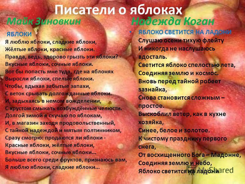 Писатели о яблоках Майк Зиновкин ЯБЛОКИ Я люблю яблоки, сладкие яблоки, Жёлтые яблоки, красные яблоки. Правда, ведь, здорово грызть эти яблоки? - Вкусные яблоки, сочные яблоки. Вот бы попасть мне туда, где на яблонях Выросли яблоки, спелые яблоки. Чт