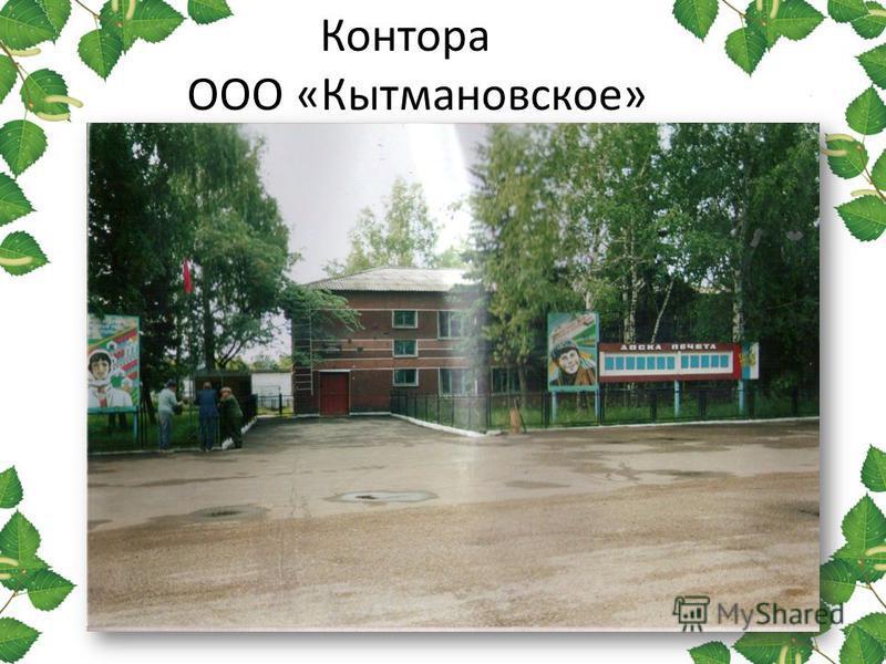 Контора ООО «Кытмановское»