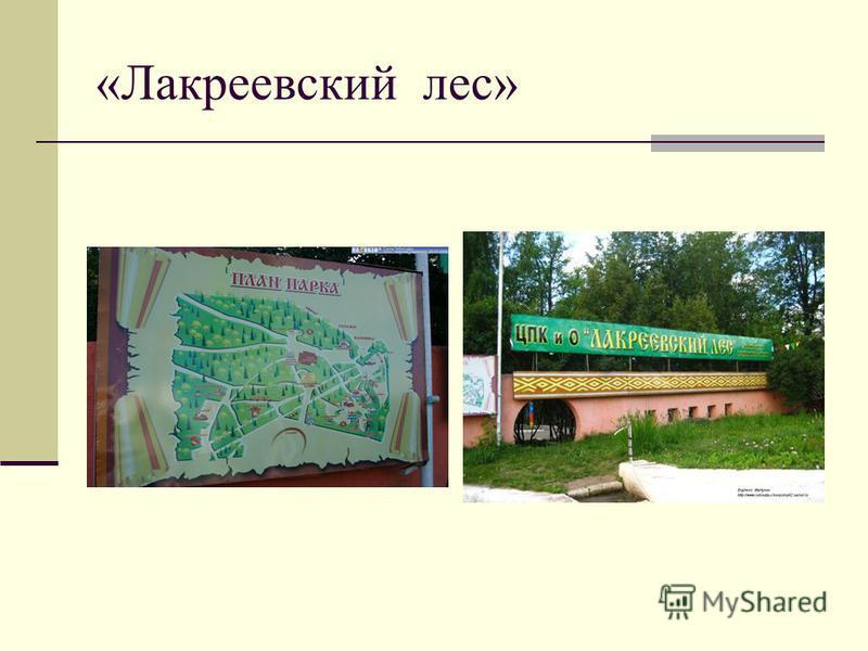 «Лакреевский лес»