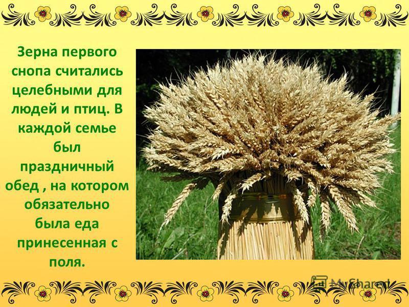 Зерна первого снопа считались целебными для людей и птиц. В каждой семье был праздничный обед, на котором обязательно была еда принесенная с поля.