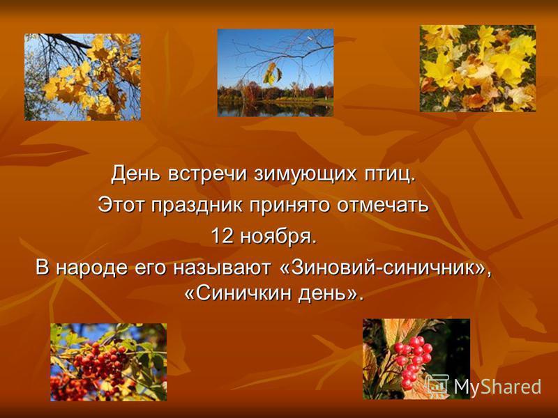 День встречи зимующих птиц. Этот праздник принято отмечать 12 ноября. В народе его называют «Зиновий-синичник», «Синичкин день».