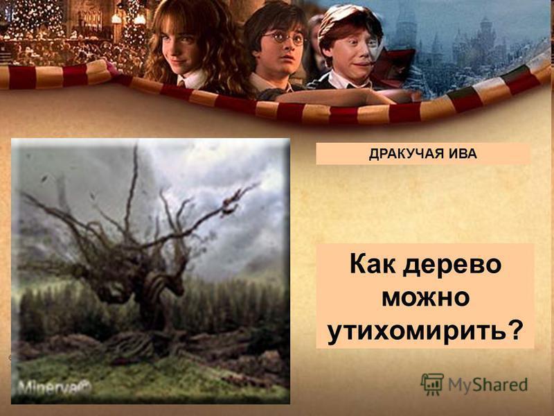 http://www.kinodrive.com/kino/potter1_24. jpg охотники квоффл бладжер загонщики снитч ловец