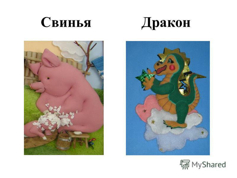 Свинья Дракон