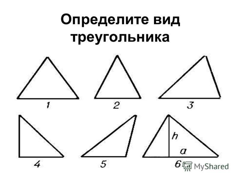 Виды треугоеельников По углам Остроугольный ТупоугольныйПрямоугольный