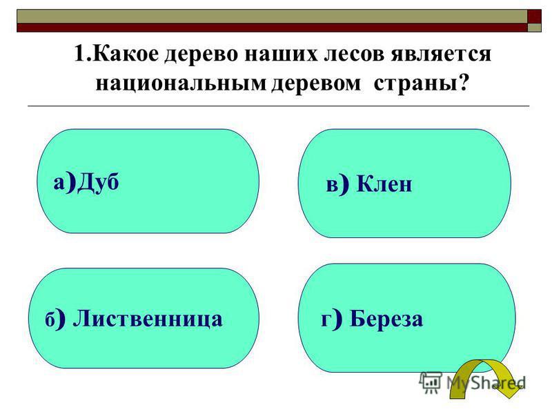 а ) Дуб б ) Лиственница г ) Береза в ) Клен 1. Какое дерево наших лесов является национальным деревом страны?