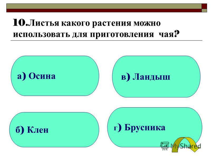 а ) Осина б ) Клен г ) Брусника в ) Ландыш 10. Листья какого растения можно использовать для приготовления чая ?