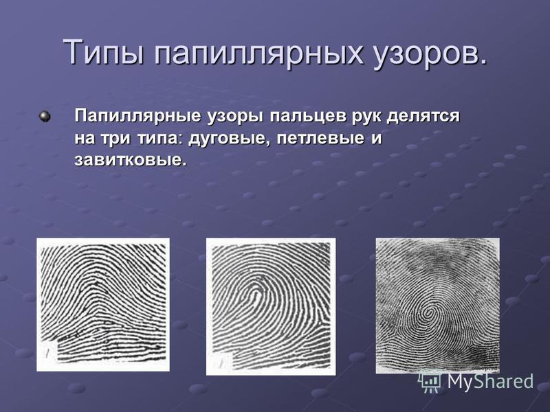 Типы папиллярных узоров. Папиллярные узоры пальцев рук делятся на три типа: дуговые, петлевые и завитковые. Папиллярные узоры пальцев рук делятся на три типа: дуговые, петлевые и завитковые.