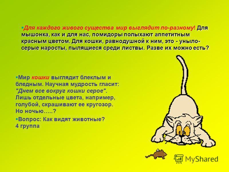 Для мышонка, как и для нас, помидоры полыхают аппетитным красным цветом. Для кошки, равнодушной к ним, это - уныло- серые наросты, пылящиеся среди листвы. Разве их можно есть? Для каждого живого существа мир выглядит по-разному! Для мышонка, как и дл