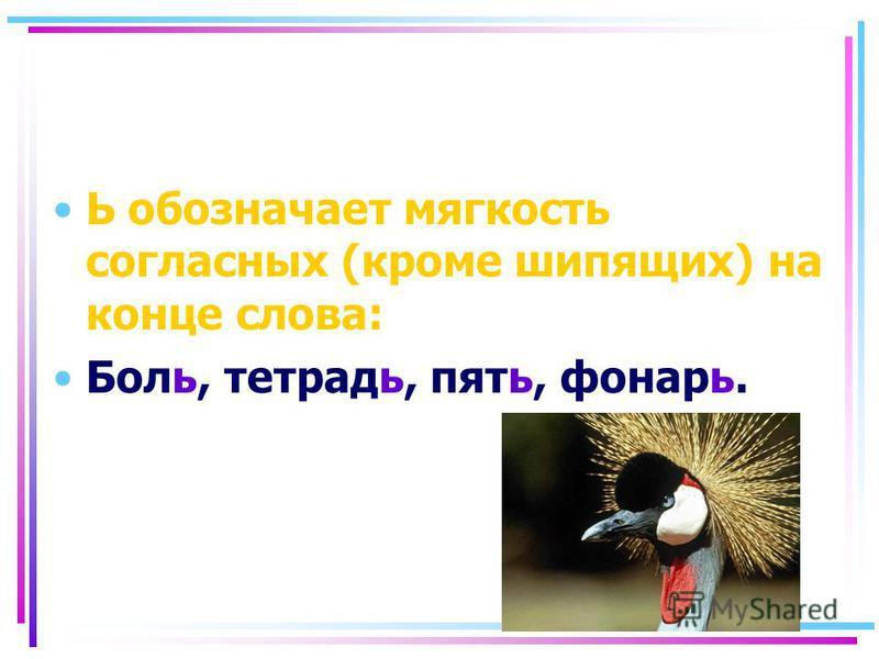 Ь обозначает мягкость согласных (кроме шипящих) на конце слова: Боль, тетрадь, пять, фонарь.