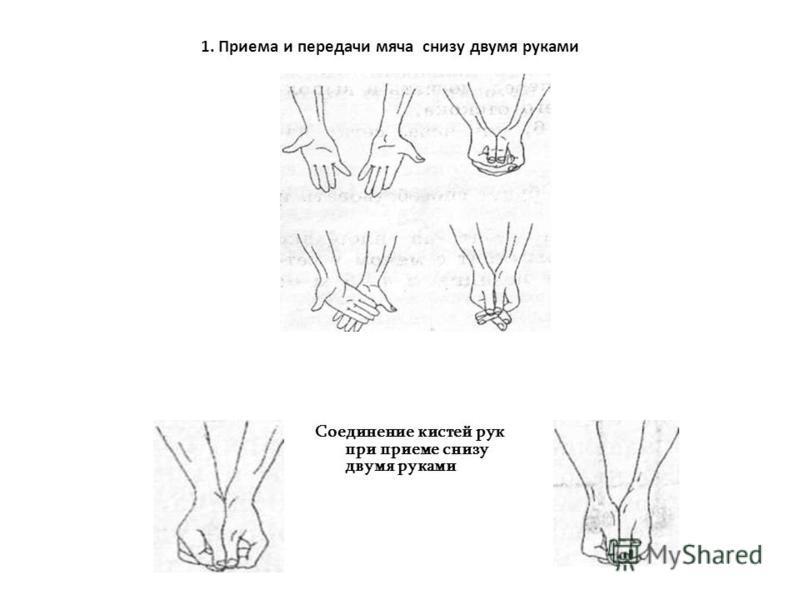 1. Приема и передачи мяча снизу двумя руками Соединение кистей рук при приеме снизу двумя руками