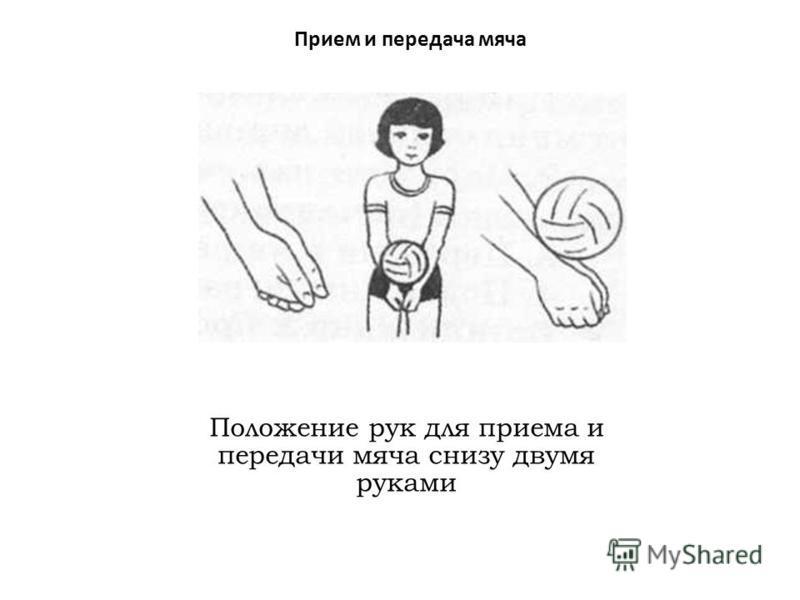 Прием и передача мяча Положение рук для приема и передачи мяча снизу двумя руками