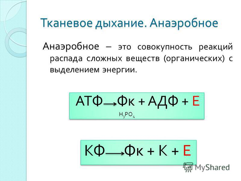Тканевое дыхание. Анаэробное Н 3 РО 4 Анаэробное – это совокупность реакций распада сложных веществ ( органических ) с выделением энергии. АТФ Фк + АДФ + Е КФ Фк + К + Е