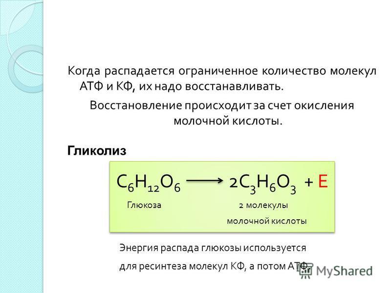 Когда распадается ограниченное количество молекул АТФ и КФ, их надо восстанавливать. Восстановление происходит за счет окисления молочной кислоты. С 6 Н 12 О 6 2С 3 Н 6 О 3 + Е Глюкоза 2 молекулы молочной кислоты Гликолиз Энергия распада глюкозы испо