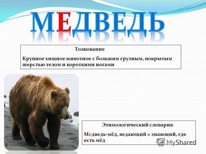 Толкование Крупное хищное животное с большим грузным, покрытым шерстью телом и короткими ногами Этимологический словарик Медведь-мёд, ведающий = знающий, где есть мёд