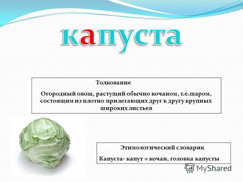 Толкование Огородный овощ, растущий обычно кочаном, т.е.шаром, состоящим из плотно прилегающих друг к другу крупных широких листьев Этимологический словарик Капуста- капут = кочан, головка капусты