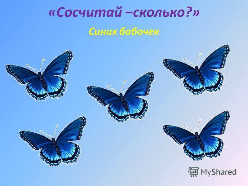 «Сосчитай –сколько?» Синих бабочек