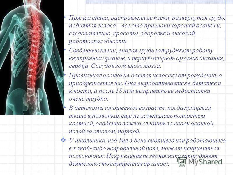 Прямая спина, расправленные плечи, развернутая грудь, поднятая голова – все это признаки хорошей осанки и, следовательно, красоты, здоровья и высокой работоспособности. Сведенные плечи, впалая грудь затрудняют работу внутренних органов, в первую очер