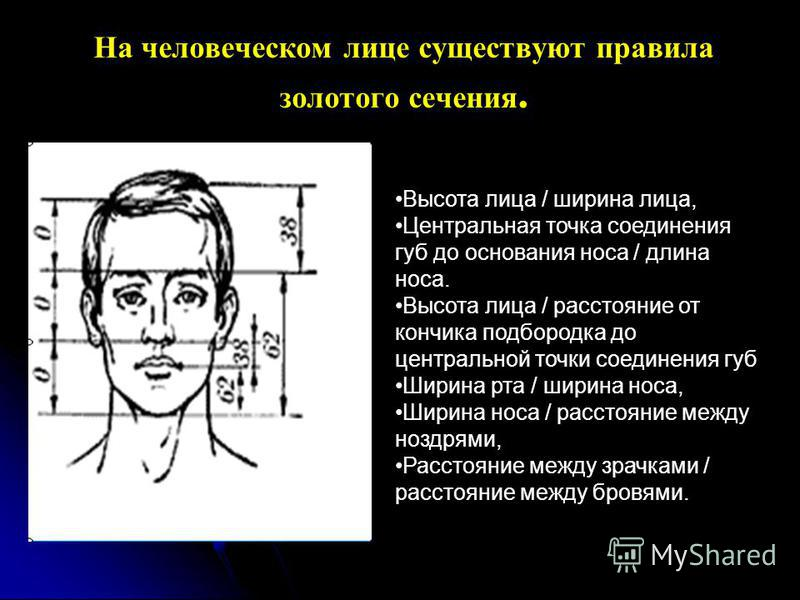 На человеческом лице существуют правила золотого сечения. Высота лица / ширина лица, Центральная точка соединения губ до основания носа / длина носа. Высота лица / расстояние от кончика подбородка до центральной точки соединения губ Ширина рта / шири