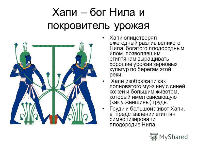 Хапи – бог Нила и покровитель урожая Хапи олицетворял ежегодный разлив великого Нила, богатого плодородным илом, позволявшим египтянам выращивать хорошие урожаи зерновых культур по берегам этой реки. Хапи изображали как полноватого мужчину с синей ко