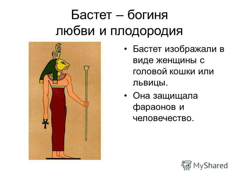 Бастет – богиня любви и плодородия Бастет изображали в виде женщины с головой кошки или львицы. Она защищала фараонов и человечество.