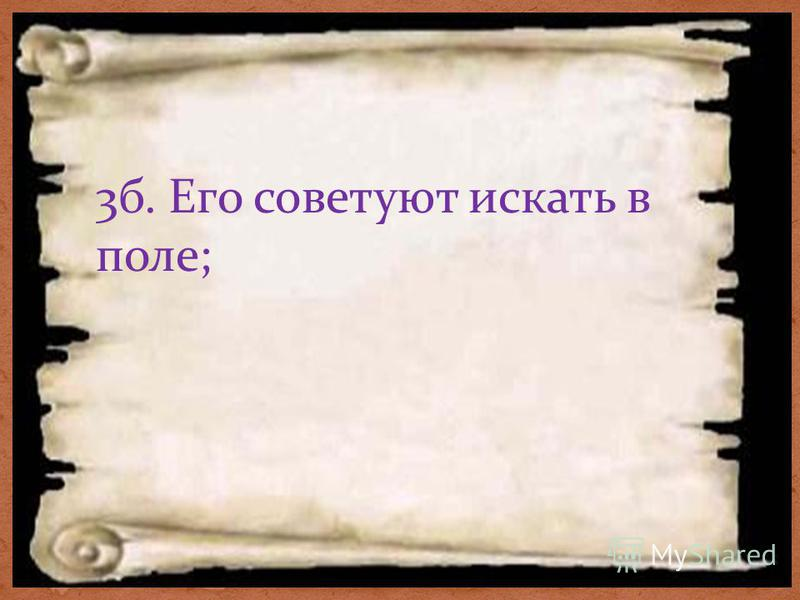 3 б. Его советуют искать в поле;