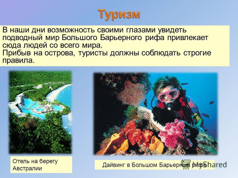 В наши дни возможность своими глазами увидеть подводный мир Большого Барьерного рифа привлекает сюда людей со всего мира. Прибыв на острова, туристы должны соблюдать строгие правила. Дайвинг в Большом Барьерном рифе Отель на берегу Австралии