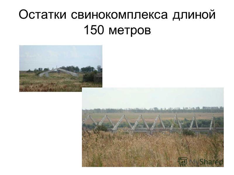 Остатки свинокомплекса длиной 150 метров