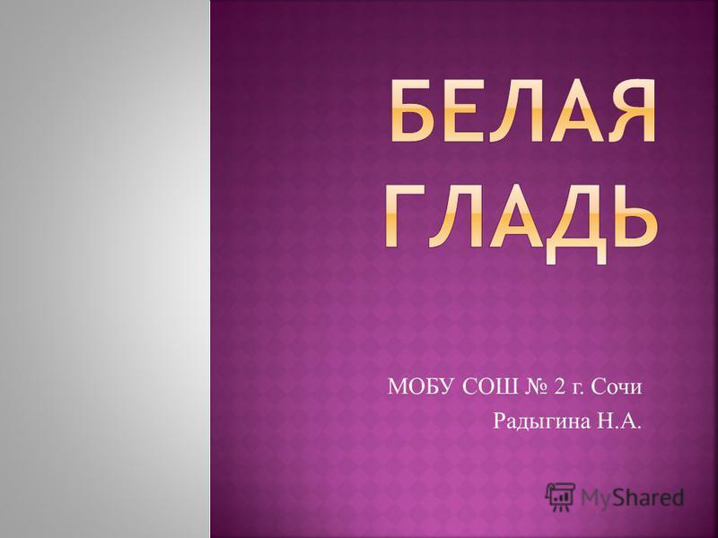 МОБУ СОШ 2 г. Сочи Радыгина Н.А.