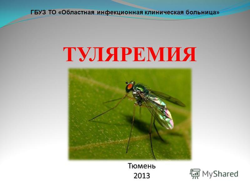 ГБУЗ ТО «Областная инфекционная клиническая больница» Тюмень 2013 ТУЛЯРЕМИЯ
