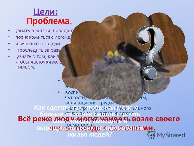 Цели: узнать о жизни, повадках ласточек; познакомиться с легендами об этих птицах; изучить их повадки; проследить за развитием и ростом их птенцов; узнать о том, как должен вести себя человек, чтобы ласточки могли селиться рядом с его жильём. Задачи: