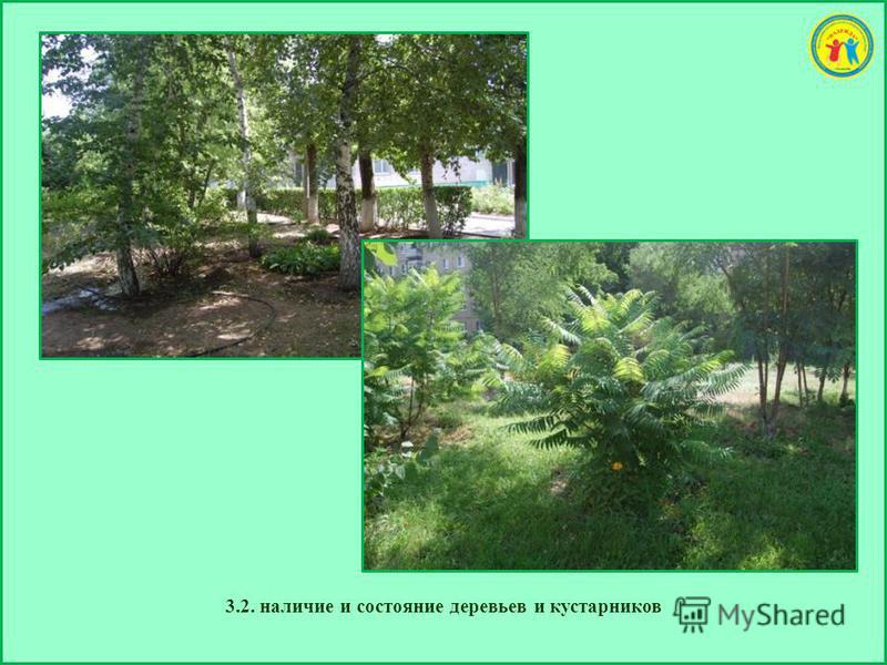 3.2. наличие и состояние деревьев и кустарников