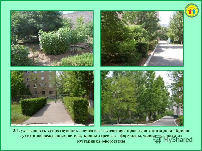 3.4. ухоженность существующих элементов озеленения: проведена санитарная обрезка сухих и поврежденных ветвей, кроны деревьев оформлены, живые изгороди из кустарника оформлены