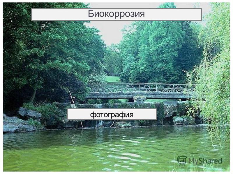 Биокоррозия (биологическая коррозия) - тип коррозионного разрушения в условиях воздействия микроорганизмов. Продукты жизнедеятельности различных микроорганизмов, которые присутствуют в воде, грунте, интенсифицируют процесс коррозии. Биокоррозия фотог