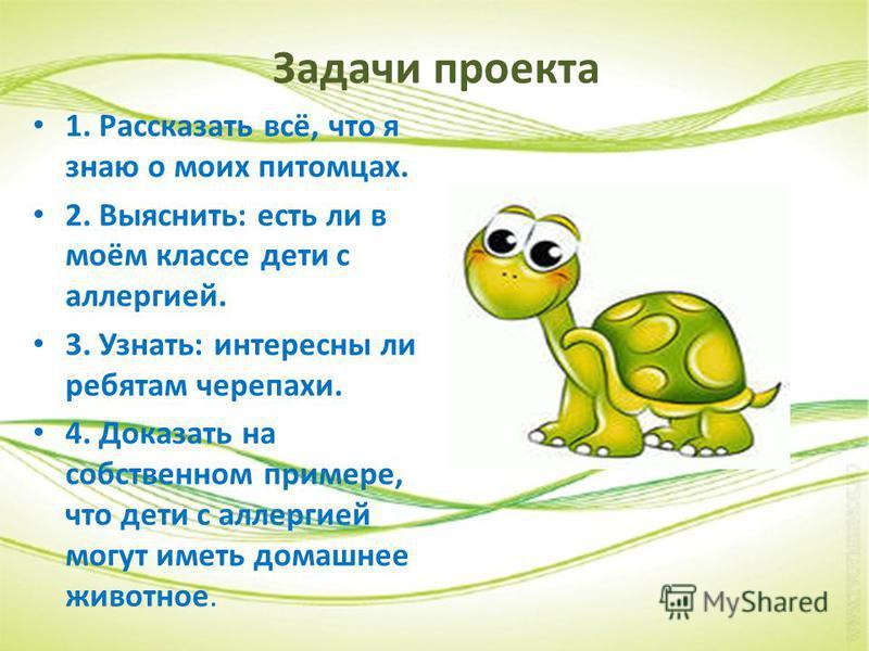 Задачи проекта 1. Рассказать всё, что я знаю о моих питомцах. 2. Выяснить: есть ли в моём классе дети с аллергией. 3. Узнать: интересны ли ребятам черепахи. 4. Доказать на собственном примере, что дети с аллергией могут иметь домашнее животное.