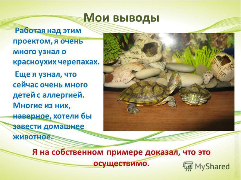 Мои выводы Работая над этим проектом, я очень много узнал о красноухих черепахах. Еще я узнал, что сейчас очень много детей с аллергией. Многие из них, наверное, хотели бы завести домашнее животное. Я на собственном примере доказал, что это осуществи