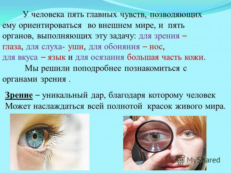 Зрение – уникальный дар, благодаря которому человек Может наслаждаться всей полнотой красок живого мира. У человека пять главных чувств, позволяющих ему ориентироваться во внешнем мире, и пять органов, выполняющих эту задачу: для зрения – глаза, для