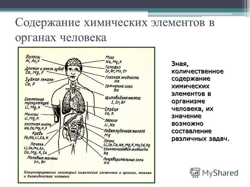 Содержание химических элементов в органах человека Зная, количественное содержание химических элементов в организме человека, их значение возможно составление различных задач.