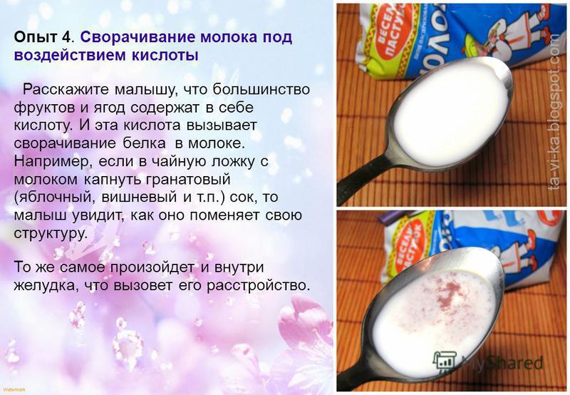 Опыт 4. Сворачивание молока под воздействием кислоты Расскажите малышу, что большинство фруктов и ягод содержат в себе кислоту. И эта кислота вызывает сворачивание белка в молоке. Например, если в чайную ложку с молоком капнуть гранатовый (яблочный,