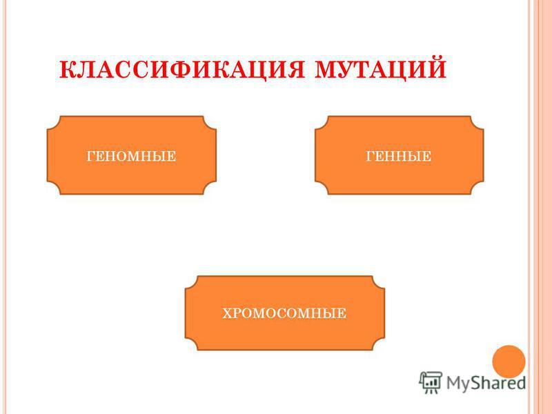 КЛАССИФИКАЦИЯ МУТАЦИЙ ГЕНОМНЫЕГЕННЫЕ ХРОМОСОМНЫЕ