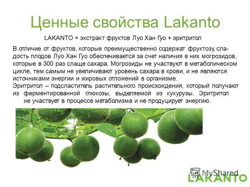 Ценные свойства Lakanto LAKANTO = экстракт фруктов Луо Хан Гуо + эритритол В отличие от фруктов, которые преимущественно содержат фруктозу, сладость плодов Луо Хан Гуо обеспечивается за счет наличия в них могрозидов, которые в 300 раз слаще сахара. М