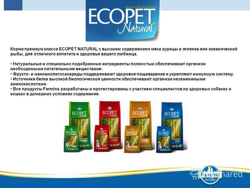Корма премиум класса ECOPET NATURAL с высоким содержанием мяса курицы и ягненка или океанической рыбы, для отличного аппетита и здоровья вашего любимца. Натуральные и специально подобранные ингредиенты полностью обеспечивают организм необходимыми пит