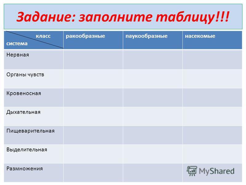 Задание: заполните таблицу!!! класс система ракообразные паукообразные насекомые Нервная Органы чувств Кровеносная Дыхательная Пищеварительная Выделительная Размножения