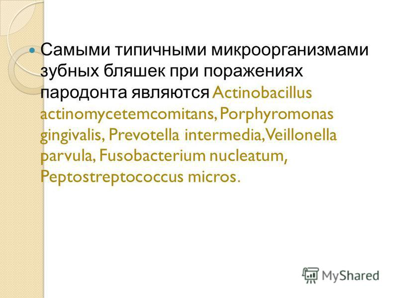 Самыми типичными микроорганизмами зубных бляшек при поражениях пародонта являются Actinobacillus actinomycetemcomitans, Porphyromonas gingivalis, Prevotella intermedia, Veillonella parvula, Fusobacterium nucleatum, Peptostreptococcus micros.