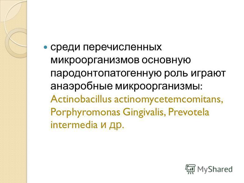 среди перечисленных микроорганизмов основную пародонтопатогенную роль играют анаэробные микроорганизмы : Actinobacillus actinomycetemcomitans, Porphyromonas Gingivalis, Prevotela intermedia и др.