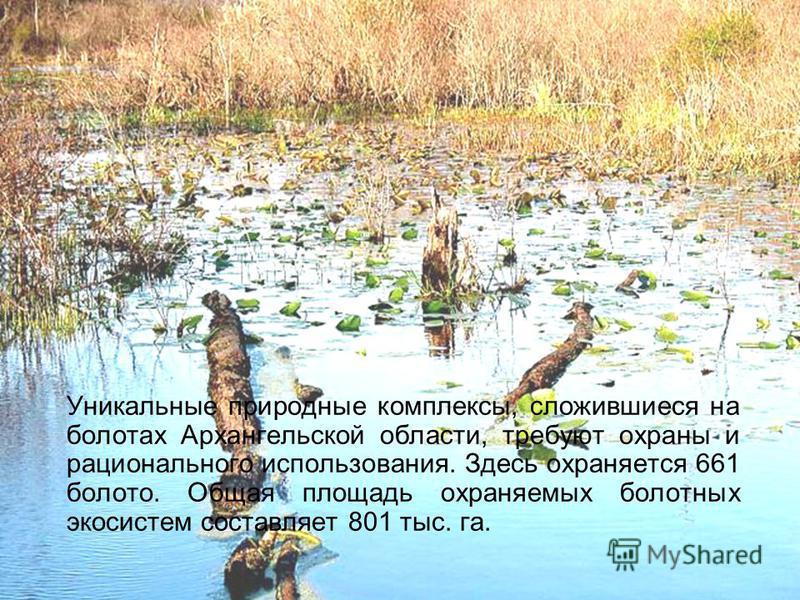 Уникальные природные комплексы, сложившиеся на болотах Архангельской области, требуют охраны и рационального использования. Здесь охраняется 661 болото. Общая площадь охраняемых болотных экосистем составляет 801 тыс. га.